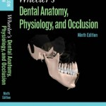 Wheeler's Dental Anatomy, Physiology and Occlusion, 9th Edition