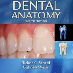 Woelfel's Dental Anatomy, 8th Edition