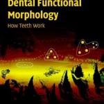 Dental Functional Morphology: How Teeth Work
