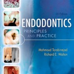 Endodontics: Principles and Practice, 4th Edition with DVD