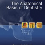The Anatomical Basis of Dentistry, 3rd Edition