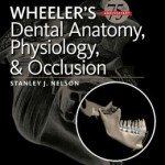 Wheeler's Dental Anatomy, Physiology and Occlusion, 10th Edition