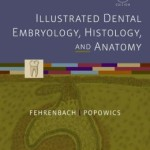 Illustrated Dental Embryology, Histology, and Anatomy, 4th Edition
