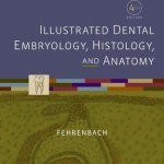 Student Workbook for Illustrated Dental Embryology, Histology and Anatomy, 4th Edition