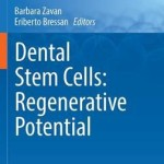 Dental Stem Cells: Regenerative Potential 2016