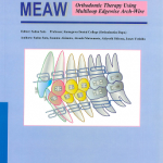 Manual for the clinical application of MEAW technique : MEAW : orthodontic therapy using multiloop edgewise arch-wire