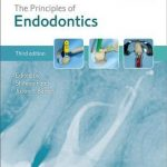 The Principles of Endodontics