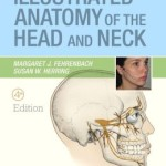 Illustrated Anatomy of the Head and Neck / Edition 4