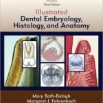 Student Workbook for Illustrated Dental Embryology, Histology and Anatomy                    / Edition 3