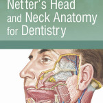 MCQs for Netter's Head and Neck Anatomy for Dentistry