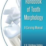 Handbook of Tooth Morphology : A Carving Manual