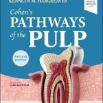 Cohen's Pathways of the Pulp, 12th Edition