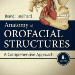Anatomy of Orofacial Structures : A Comprehensive Approach